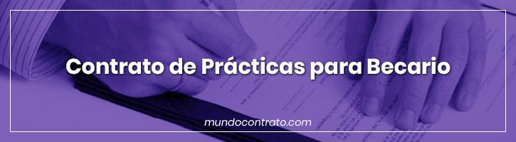 Modelo Contrato Practicas Para Becario