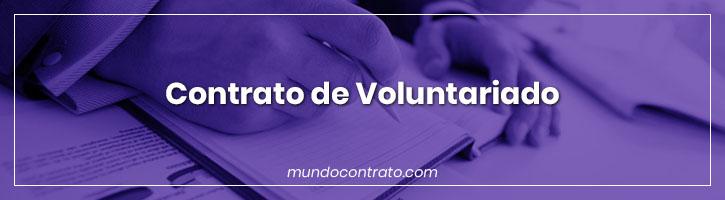Modelo Contrato Voluntariado